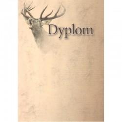 DYPLOM - JELEŃ