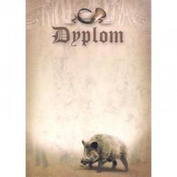 DYPLOM - DZIK
