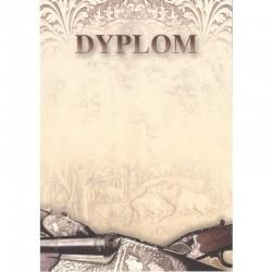 DYPLOM - BROŃ