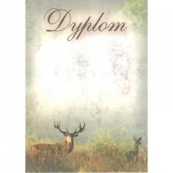 DYPLOM - JELENIE