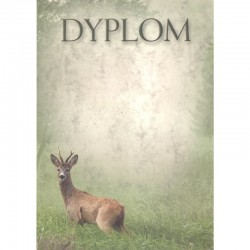 DYPLOM - ROGACZ