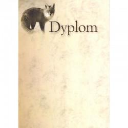 DYPLOM - LIS
